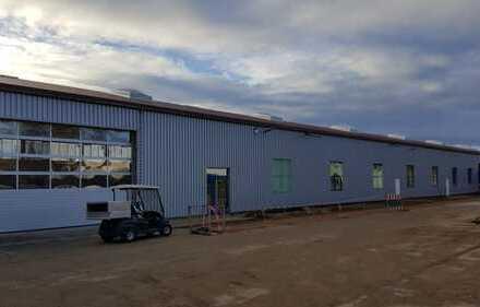 Moderne Produktionshalle/Werkstatt-provisionsfrei vom Anbieter
