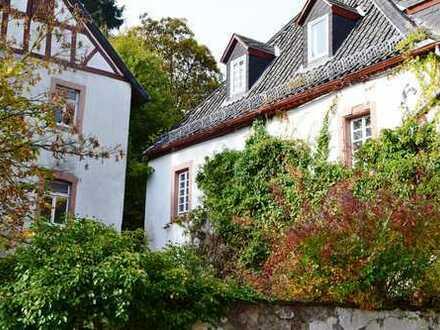 Apartment 1 Zimmer im Zentrum von Blankenheim