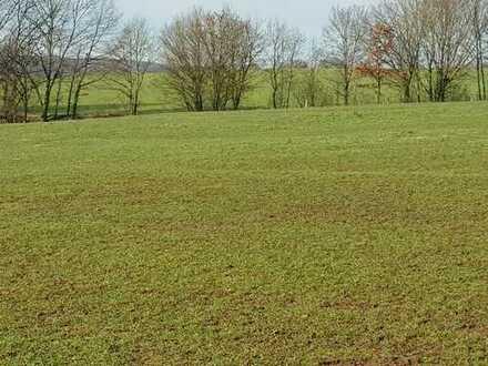 Baugrundstück frei aufteilbar in unverbaubarer Feldrandlage