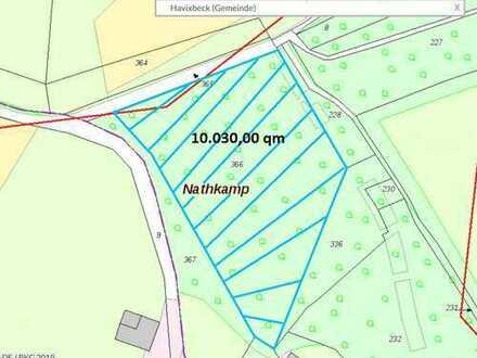 12.064m² großes Waldgrundstück zum Verkaufen