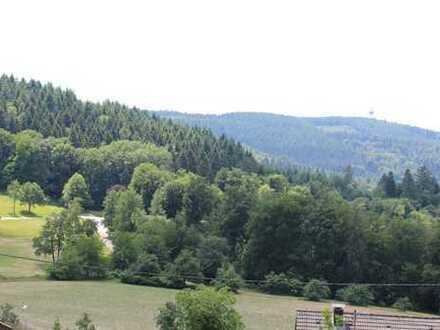 Baugrundstück mit Weitblick in herrlicher Lage von Wilhelmsfeld