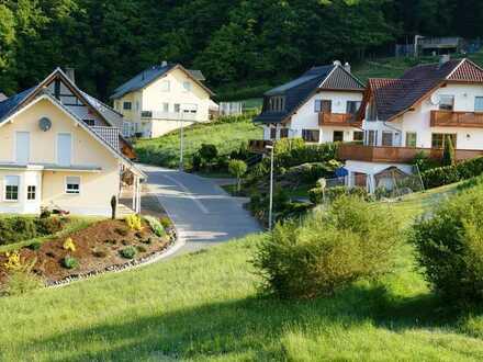 Traumhaft Wohnen? In schöner erhabenen Lage im UNESCO-Weltkulturerbe Oberes Mittelrhein in Dahlheim!