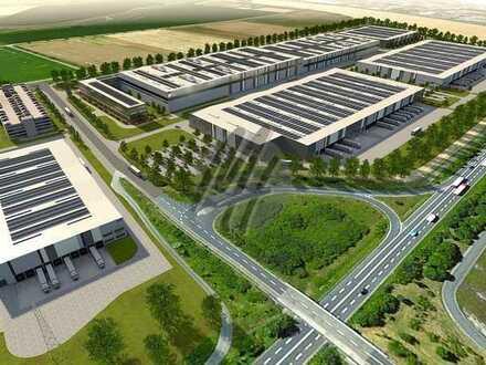 KEINE PROVISION ✓ NEUBAU ✓ Lager-/Logistik (40.000 m²) & Büro (1.500 m²) zu vermieten