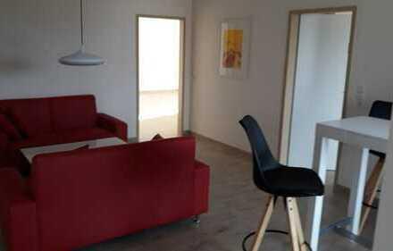 Apartment 20qm Wohn/Schlafraum, tollem Bad, Gemeinschaftswohnz., Südbalkon,Gäste WC, Waschm. WLAN