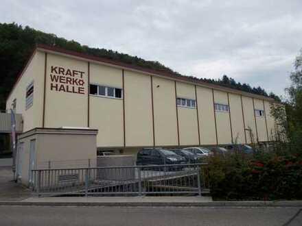 Gewerbehalle in Schopfheim direkt an der Wiese zur Miete