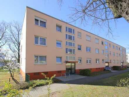 Zwei Wohnungen - ein Preis: Gestalten Sie sich selbst Ihr Zuhause