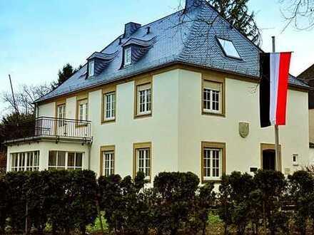 Schönes Zimmer in Mainzer Altbauvilla