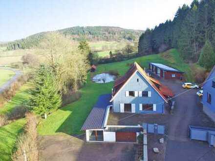 PROVISIONSFREI!! Großes Anwesen mit 2 Wohnhäusern, Garagengebäude , Badesee, Reitplatz, Partyhütte