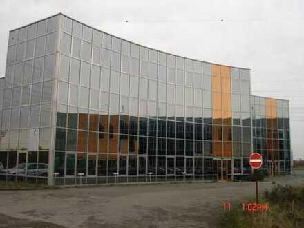 Industriehallen mit 10 to Kranbahnen, 1600qm,3700qm, 4000qm,10 jahre alt, isoliert,glasfassaden,
