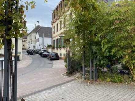 Helle, geräumige und gepflegte 1-Zimmer-Wohnung mit Einbauküche in Landau / Arzheim
