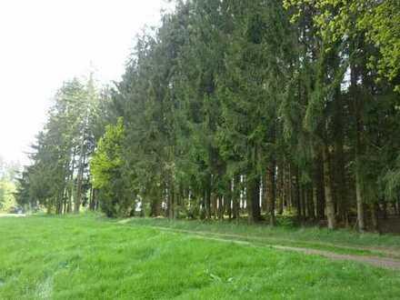 Ihr Wald wartet auf Sie!
