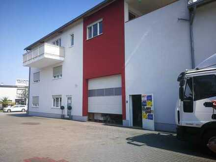 Lagerhalle mit Archivraum und Geschäftsräumen zu Vermieten