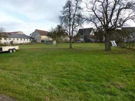 Grundstück - sonnige Lage in Amstetten (Teilort)