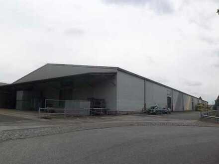 """""""BAUMÜLLER & CO."""" - ca. 1.300 m² Halle + Freifläche - ZUM KAUF"""