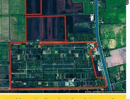 88 ha Grundstück (ca. 50 ha Baumschule mit Ackerstatus, Eigenjagd, Einfamilienhaus)