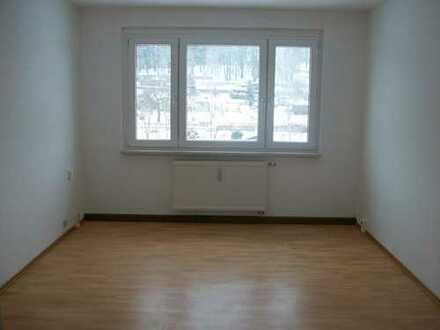 ****Top sanierte Wohnung mit Balkon, Erstbezug! Super Blick über das Vogtland, PROVISIONSFREI****