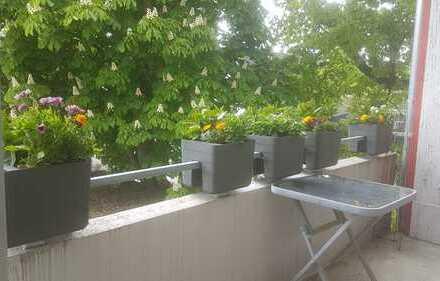 Gepflegte 3-Zimmer-Wohnung mit Balkon in Burgdorf