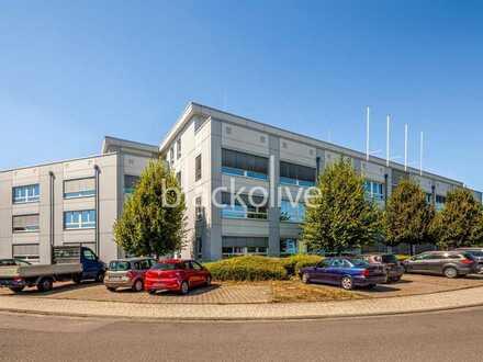 Hofheim || 460 m² - 980 m² || EUR 9,00