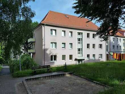 Komfortable 3-Raum-Erdgeschoss-Wohnung