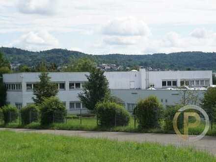 Produktion, Verwaltung, Freiflächen - Gewerbeimmobilie im Rems-Murr-Kreis zu verkaufen