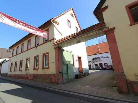Sehr große 4-Zimmer-Wohnung an der deutschen Weinstraße