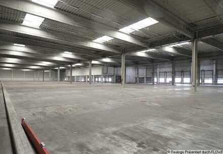 Mannheim-Viernheim, ca. 24.471 m² Logistik- und Umschlagsfläche zu vermieten