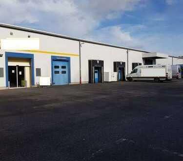 Lager/Produktionshalle mit repräsentativem Bürotrakt und guter AB Anbindung in Enkenbach