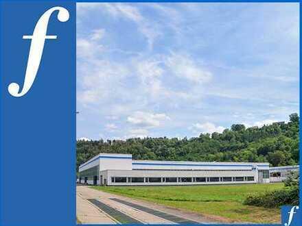 Kranbahnen * Li. Höhe bis 8m/10,4 m * Erweiterungsgrundstück * Büro/Wohnung * große Wiesenfläche