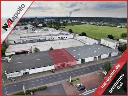 ZU VERMIETEN | 630 m² Ausstellungsfläche | attraktive Lage im Gewerbegebiet | 069-550112