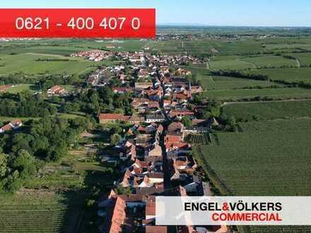 Projektentwickler aufgepasst: Baugrundstück in bester Lage nähe Deidesheim