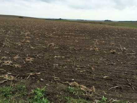 ca. 130 ha Landwirtschaftsfläche in Mecklenburg!