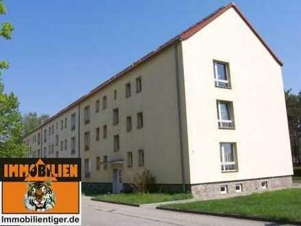 Angenehmes Wohnen im Altneubau! Alles unter www.ImmobilienTiger.de
