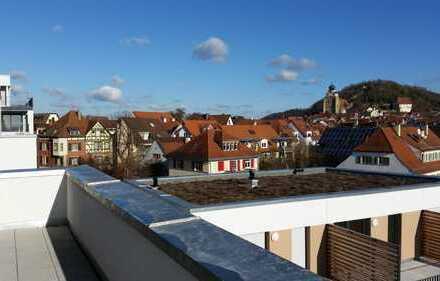 Traumhafte 3-Zimmer-Penthouse-Wohnung in Herrenberg