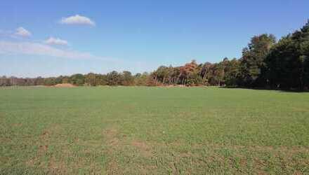 ca. 3 ha Acker-, Grünland und Wald in und um Neuhardenberg - LK Märkisch-Oderland