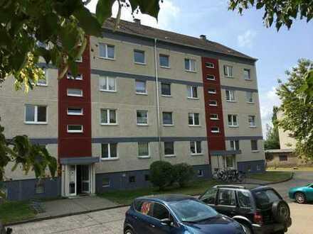 große 6 Zimmer Wohnung in Gerswalde