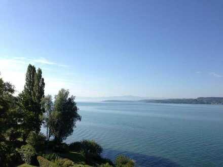 2-Zi.-Wohnung mit Traum-Aussicht und direktem Seezugang