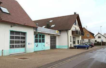 Schöne Werkstatt mit einer Ausstellungshalle/Büro, Werkstatt mit 5 Arbeitsplätzen in 71131 Jettingen
