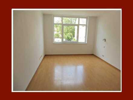 Ab sofort frei -Apartment mit Laminat & Pantryküche-nur an berufstätige Einzelperson!