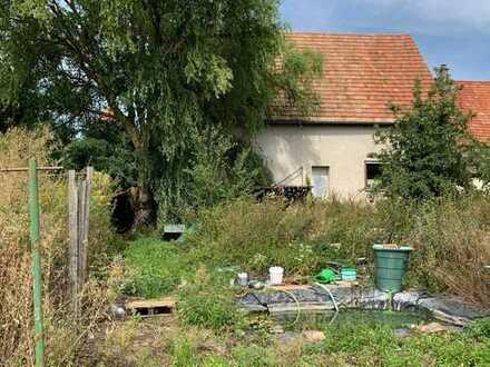 Sanierungsbedürftiges Anwesen oder großes Abrissgrundstück für Bauträger