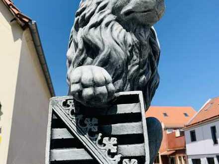Vollständig renovierte 3-Raum-Wohnung mit wunderschöner Terrasse in Leipzig