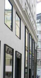 Moderne und renovierte Verkaufsflächen zu verpachten, Fußgängerzone