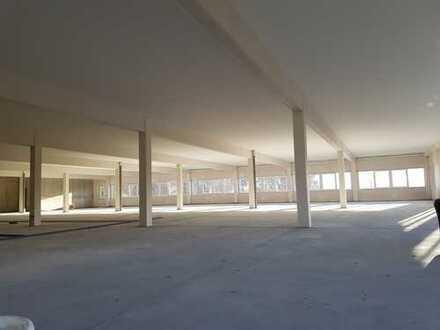 Moderne Gewerbefläche - Neubau