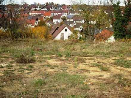 TRAUM-Bauplatz über den Dächern von Flehingen!!