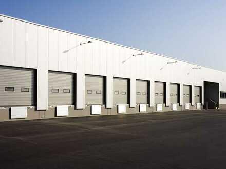 """BAUMÜLLER & CO."" - 10.000 m² Hallenfläche - Neubau"