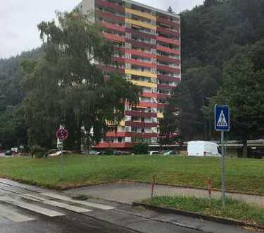 Waldkirch ++ Schöne helle 2 -Zi.- Whg. mit herrlichem Ausblick
