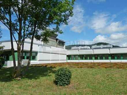 Gepflegte Büro-/ und Gewerbeflächen in Albstadt-Ebingen.