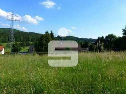 Grundstück in Hohenberg