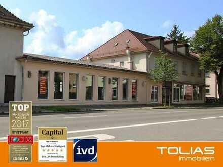 Attraktive 224 m² Laden - oder Praxisflächen im EG zur Miete