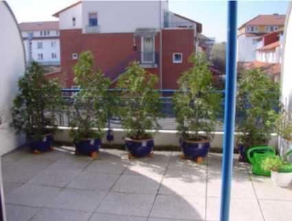 Findorff, sonnige 2 Zimmer-ETW mit Terrasse