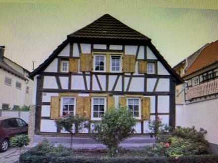 Gepflegte 5-Raum-Wohnung/Haus mit Hof und Balkon in Lachen-Sp.